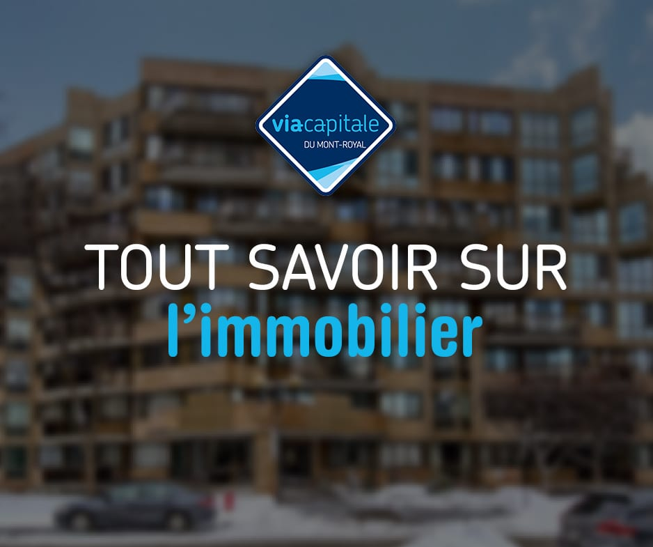 Tout savoir sur l'immobilier | L'inspection de la propriété