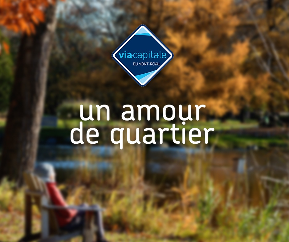 Un Amour de Quartier: HoMa