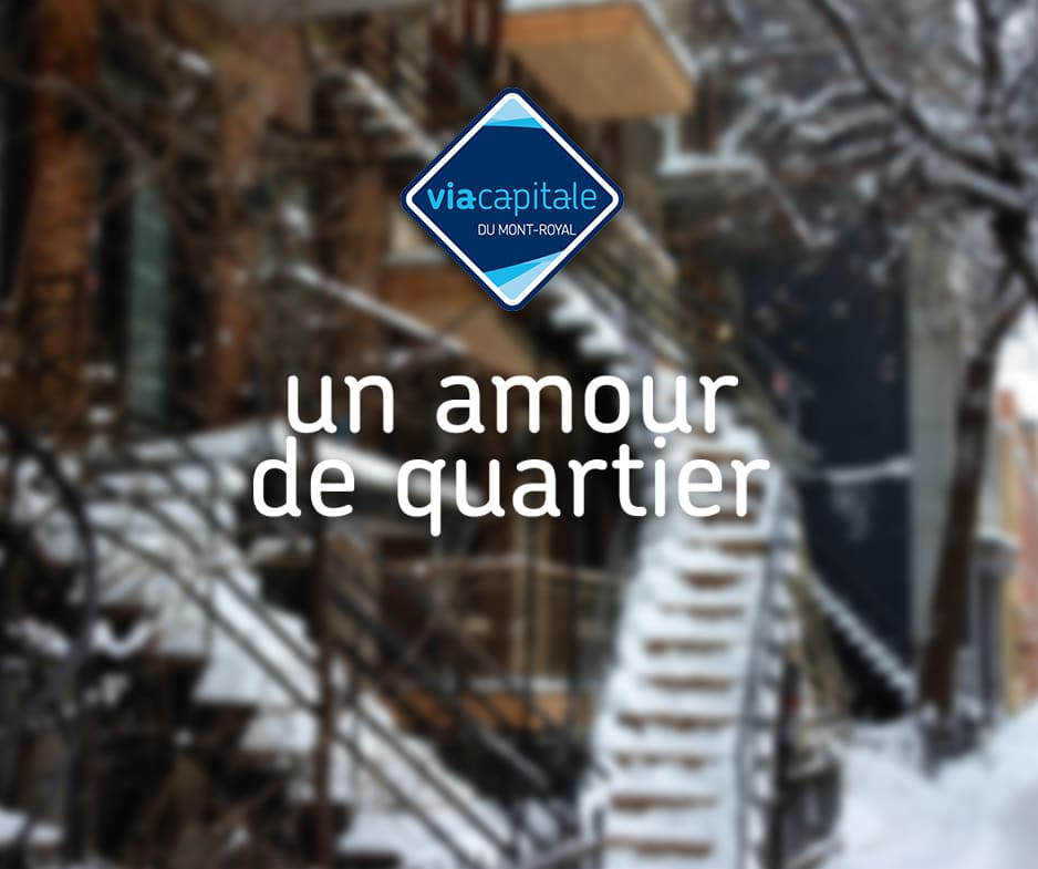 Un Amour de Quartier: Le Plateau-Mont-Royal en hiver